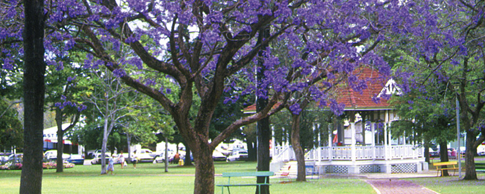 gympie - photo #19